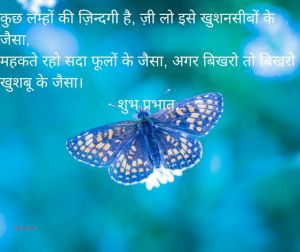good morning quotes in hindi good morning quotes in hindi