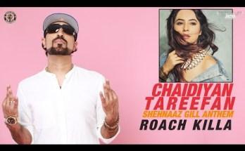 Chaidiyan Tareefan Lyrics - Roach Killa