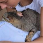 Hannah mit Katze Luise 2