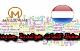 اختبار2: تدريبي في معاني الكلمات الهولندية
