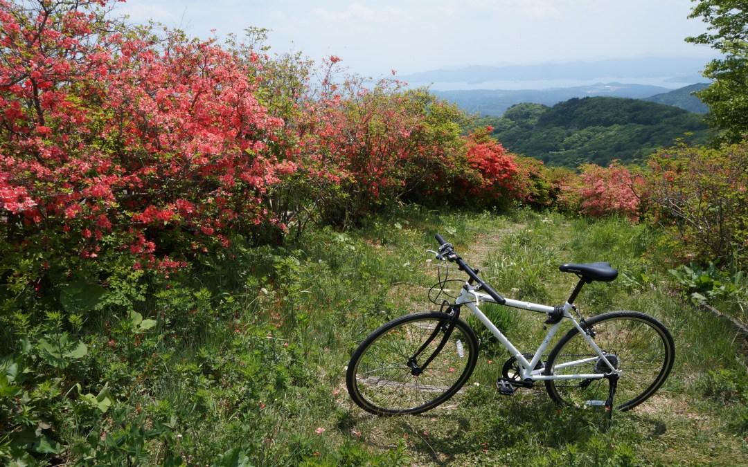 The Bounty of Ocean & Mountain (Utatsu Journey)