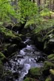 田束山登山道中にある滝
