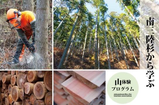 国際森林認証を取得した南三陸の森に学ぶ<br/>(林業体験プログラム)
