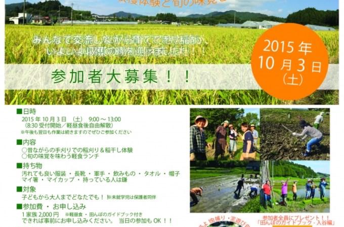 稲刈り&収穫祭