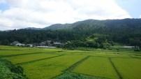 空気が気持ちいい。田舎ならではの田園風景をお楽しみください。