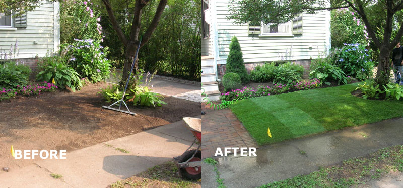 MM Landscaping  Before  After