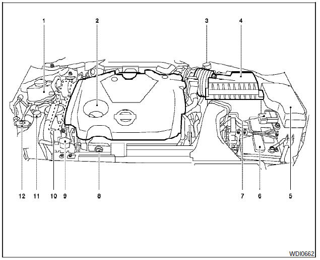 Nissan Maxima: Engine compartment check locations
