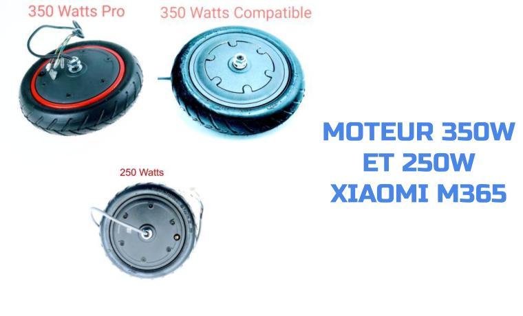 moteur 350 w 250W xiaomi m365 (1)