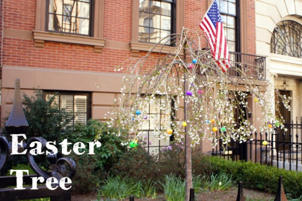 Easter Tree - Marlborough Street - Boston