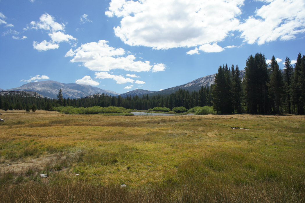 yosemite national park californie plaines