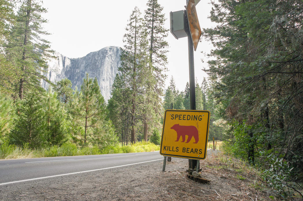 yosemite national park californie 1