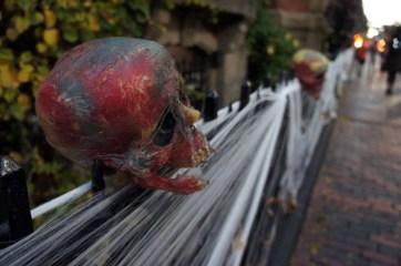 Crâne - Halloween, Malborough Street, Boston