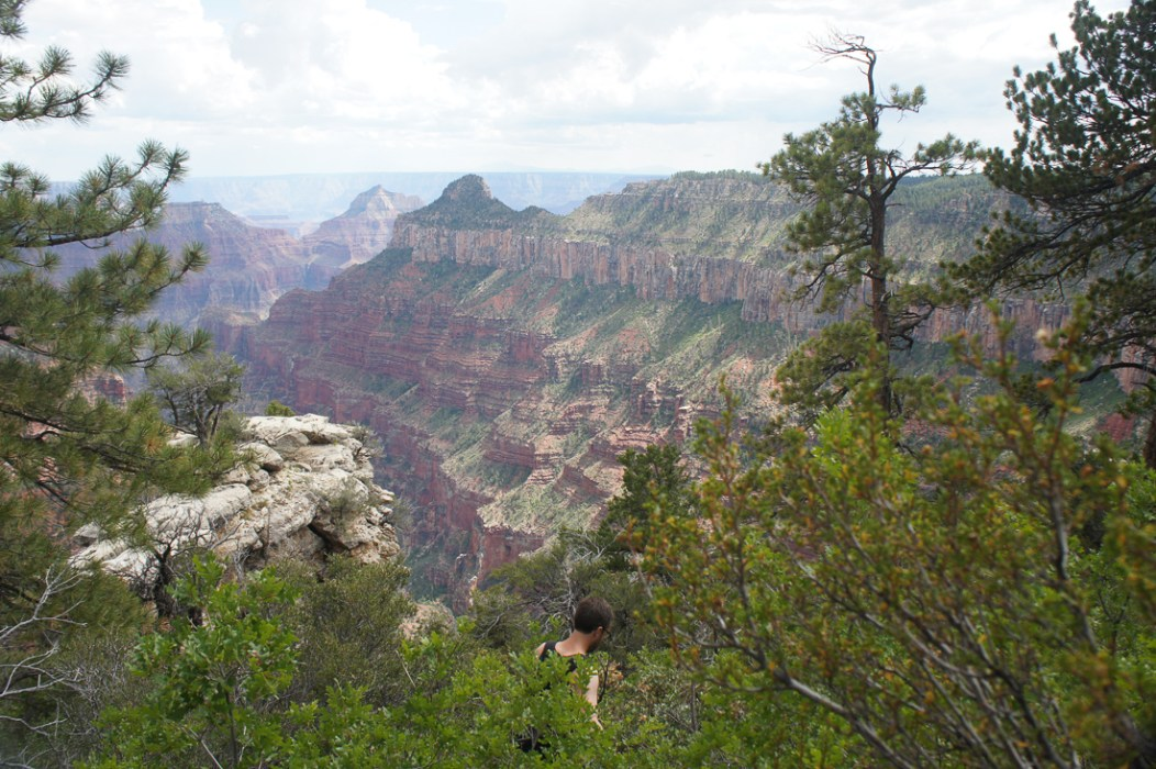 Grand canyon north rim le blog de mathilde 9