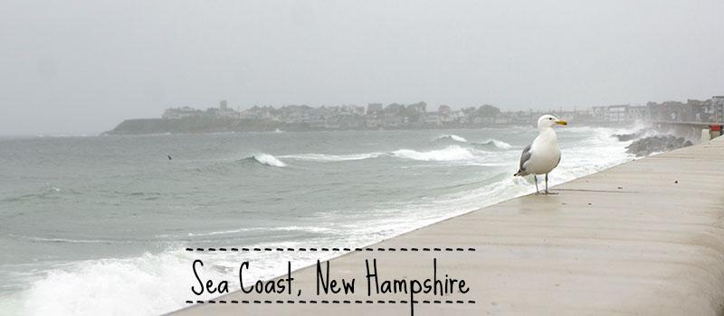Sea Coast New Hampshire
