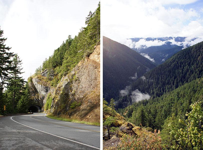 hurricane ridge - Olympic National Park