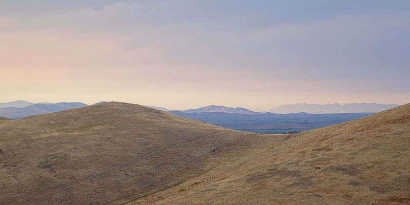 Bison Range Montana 6