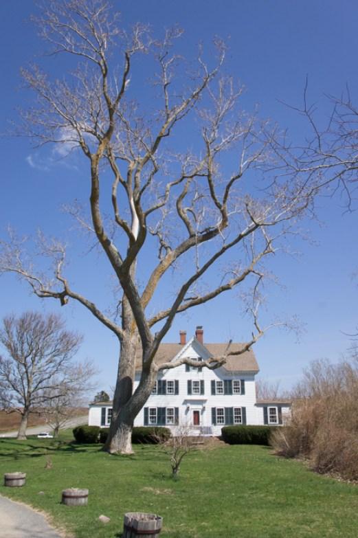 Magnifique maison Penniman House - Fort Hill Trail - Cape Cod