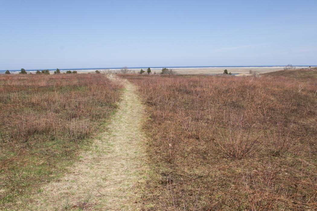 Fort Hill Trail - se promener au Cape Cod 1