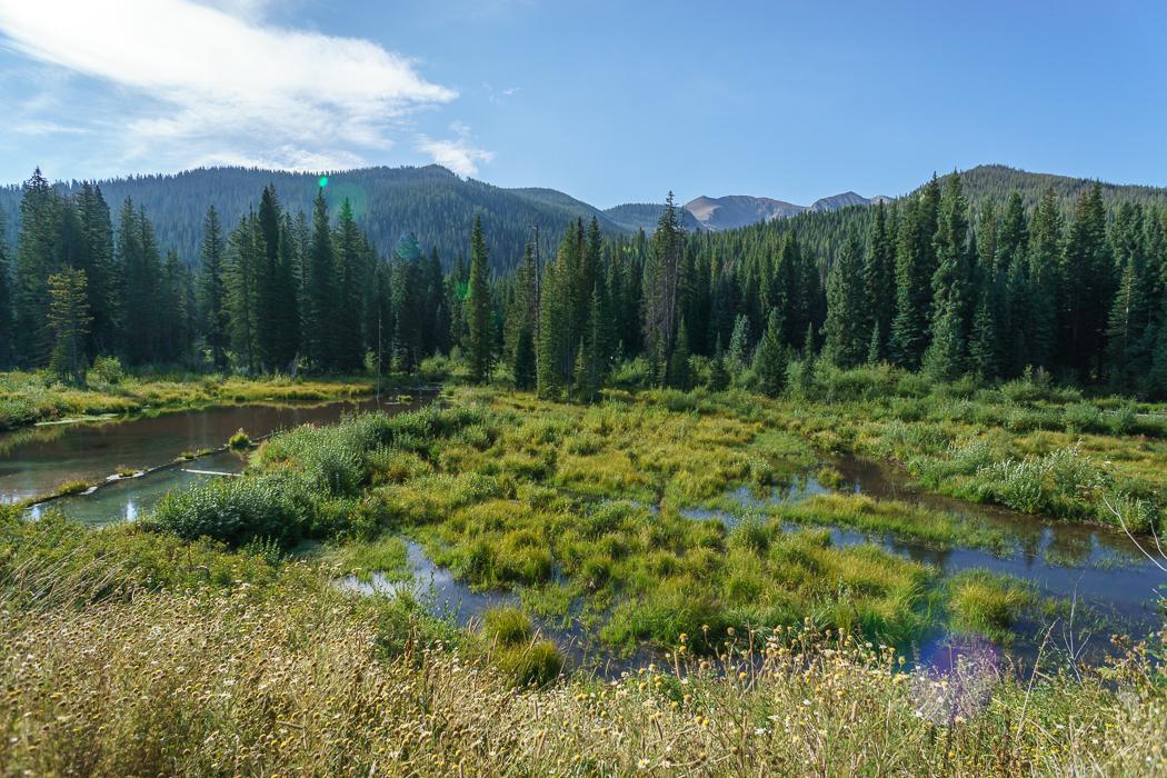 Colorado-Elk-Loop-11 marais