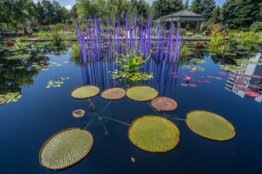 Botanical Garden - Denver Colorado-33