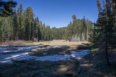 Crescent Meadows - sequoia national park californie-1