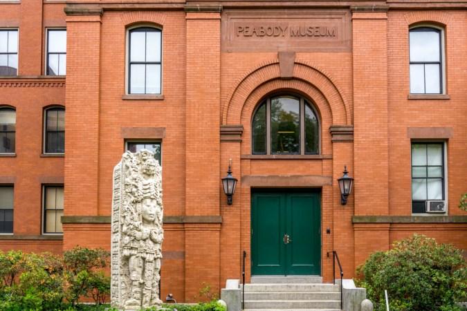 Peabody Museum - Harvard University Cambridge-1