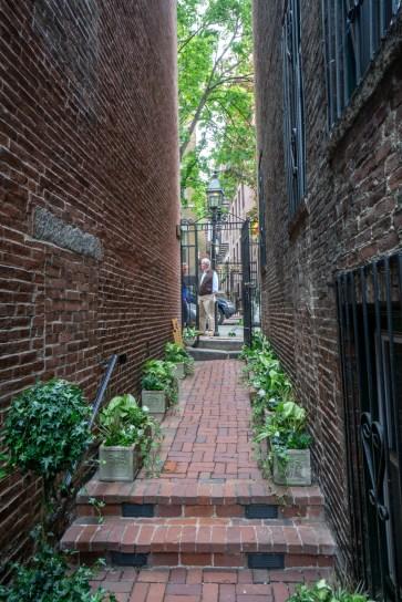 Jardins secrets Beacon Hill Boston-16