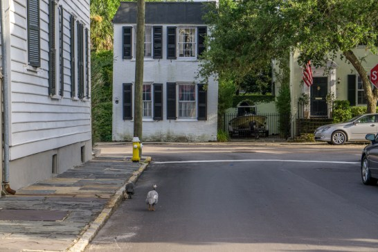 Charleston Caroline du Sud le centre historique-10