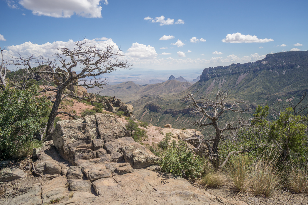 Big Bend Texas - lost mine trail 1
