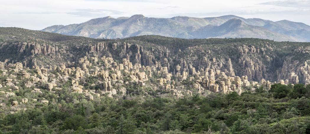Chiricahua Arizona-4