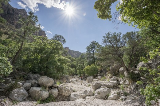 Guadalupe Mountains National Park Texas-16