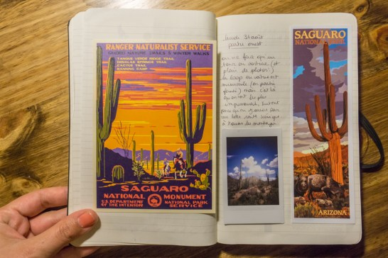 Saguaro Cactus Arizona - carnet de voyage