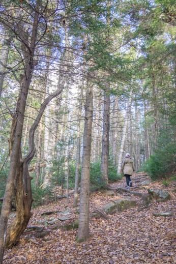 Vermont New England-6