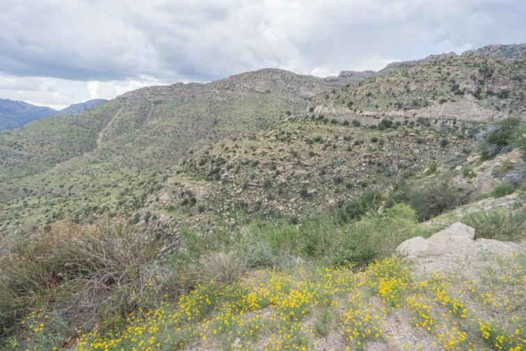 Tucson Arizona - mt lemmon 1