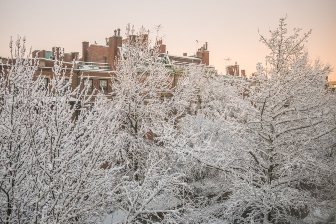Snow Day-3