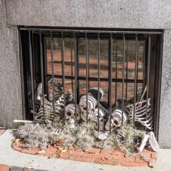 halloween-boston-7