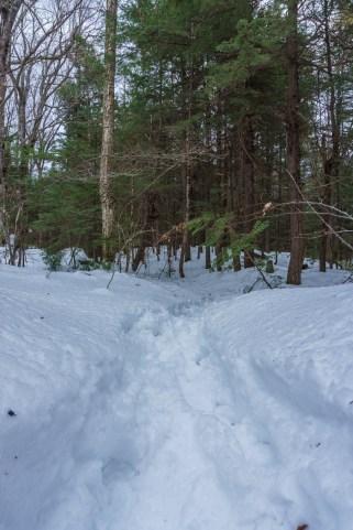 New Hampshire ski-8