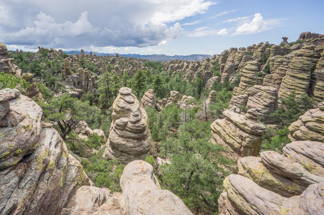 Chiricahua Arizona-1