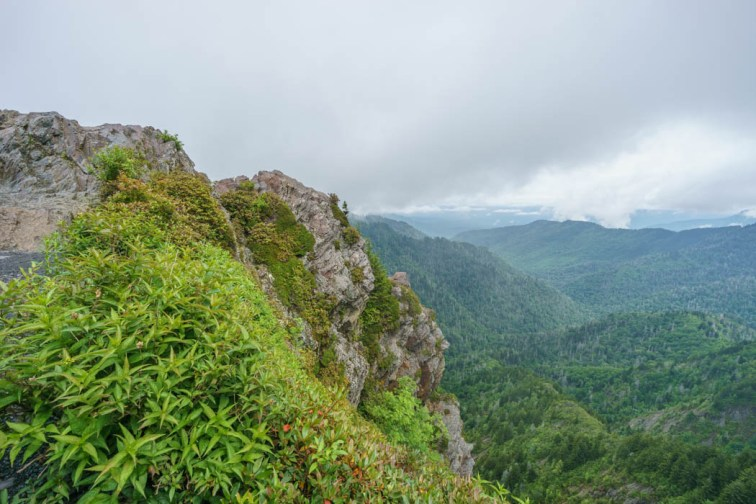 Great Smoky National Park-16