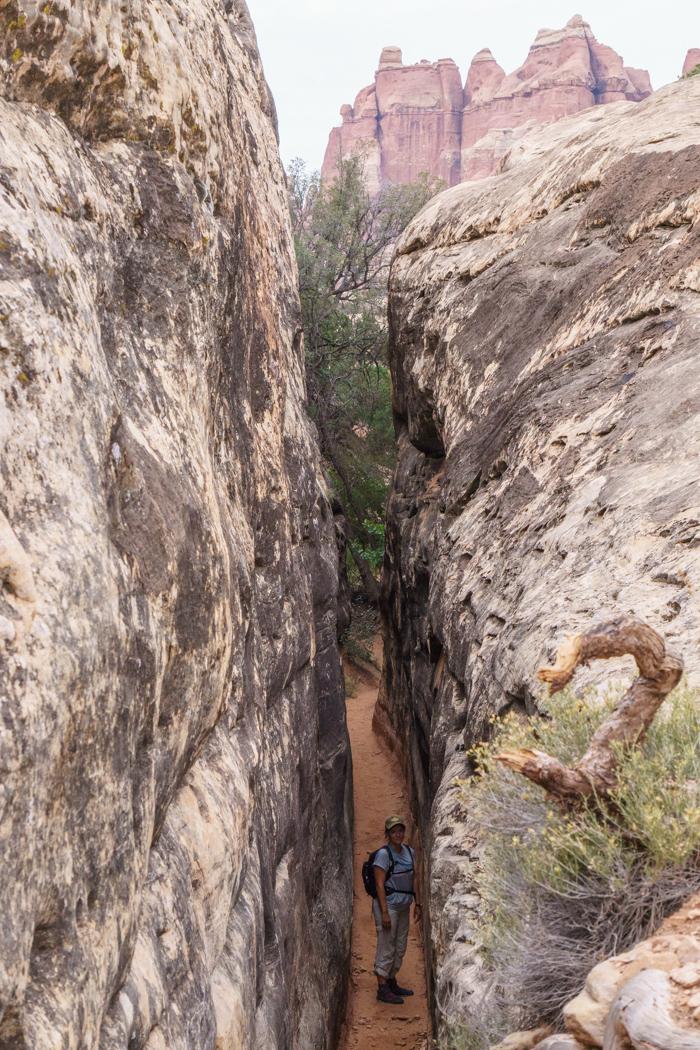 canyonlands the needles utah 4