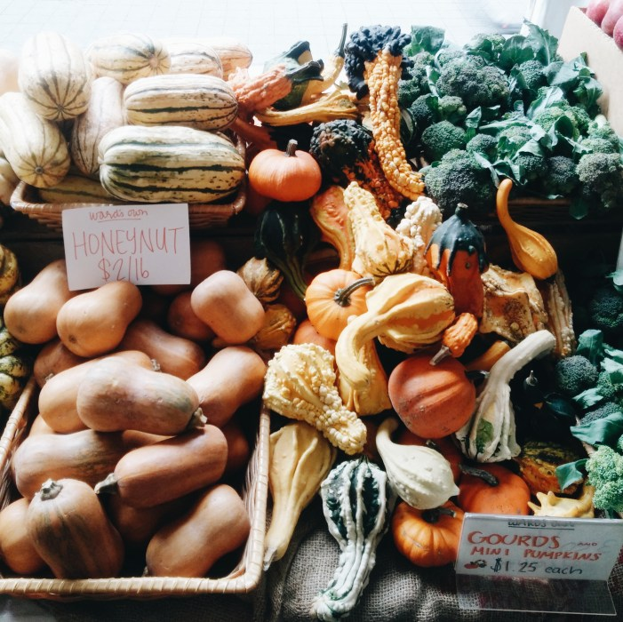Legumes boston organics