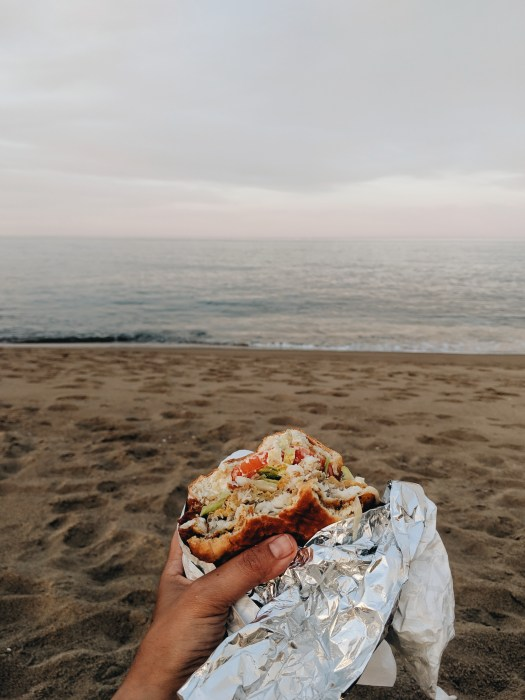 Fish Sandwich on Plum Island