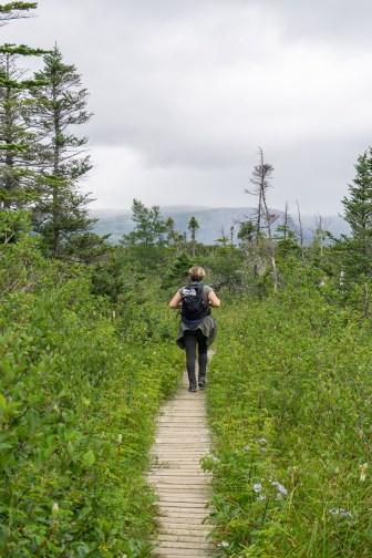Gros morne national park terre neuve canada 7