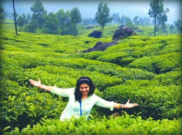 tea garden india