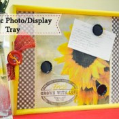 Magnetic Photo Display Tray