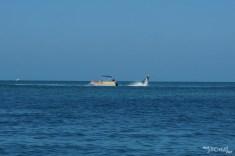 Et mon chef s'est vu offrir une sortie en jetpack – engin propulsé en l'air grâce à de l'eau – par les membres du groupe de travail PEN réunis avant la conférence.