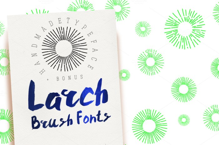 Creativemarket_Larch_Brush_Font_218997_cap01