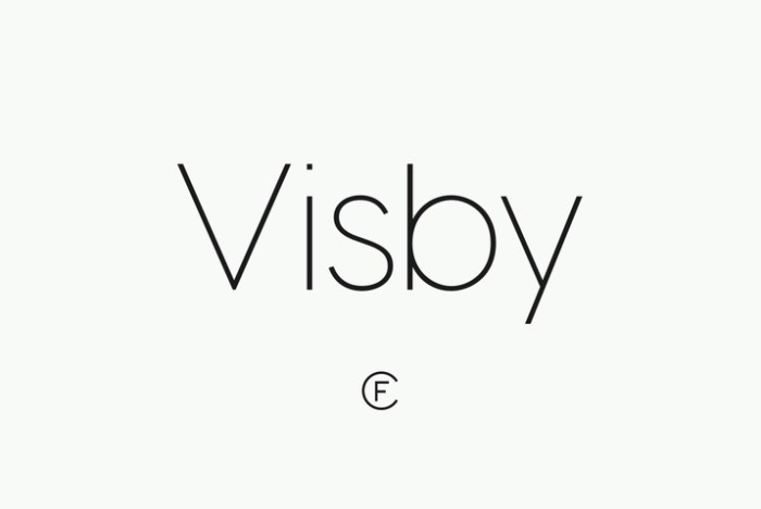 Creativemarket_Visby__intro_sale_184499_cap01