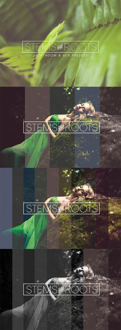 Creativemarket_Stems_and_Roots_LR_ACR_Presets_280476_cap01