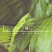 Creativemarket Stems and Roots LR ACR Presets 280476 icon